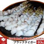 尾付き伸ばし剥きブラックタイガー40尾(下ごしらえ済み)(冷凍時) 加熱用(エビ えび 海老 蝦)