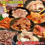ショッピング肉 秘伝タレ漬け焼肉7品から選べる5点チョイス肉袋1.5kg カルビ ハラミ ジンギスカン ホルモン 豚サガリ 豚トロ 塩牛カルビ 冷凍