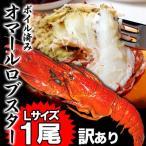 訳ありオマールロブスター(オマールエビ) 大型Lサイズ約350〜400g前後1尾(えび 海老 蝦) ボイル加熱済 冷凍