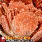 毛蟹 - 毛蟹 毛がに けがに ケガニ かにみそ 味噌 特大 570gオーバー2尾 100%北海道オホーツク産 ボイル 冷凍