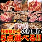 組合せ自由の選べる5点焼肉BBQ箱 9種類からお好きな商品をご選択ください セット 送料無料 冷凍
