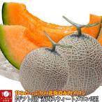 【超早割】北海道産赤肉スウィートメロン約1.3〜1.6kg前後を2玉セット 食べごろ説明書入り 送料無料 常温or冷蔵