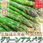 蘆筍 - 【送料無料】優品/北海道名寄産グリーンアスパラ 1kg M〜2Lサイズ