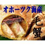 送料無料 毛蟹のブランド オホーツク産 毛蟹 500g×2尾