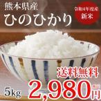 ひのひかり 米 送料無料 5kg 29年度産 熊本県産 お米 こめ コメ こしひかり 新米