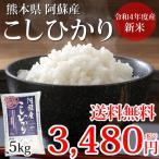 こしひかり 米 送料無料 5kg 29年産新米 熊本県阿蘇産 地域限定米 お米 新米 こめ ひのひかり