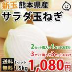 玉ねぎ サラダ玉ねぎ 送料無料 新玉 1.2kg S〜L 熊本県産 2セットで1セットおまけ 3セットで3セットおまけ 玉葱 たまねぎ 野菜