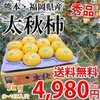 太秋柿 柿 送料無料 秀品3kg  8〜14玉入り 熊本県産 たいしゅうがき 太秋 かき カキ