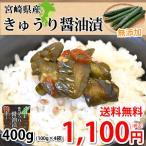 漬物 きざみきゅうり漬け 150g×4袋 送料無料 ポイント消化 宮崎県産 きゅうり つけもの