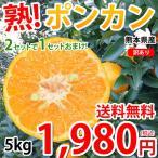熊本県産 訳あり ポンカン 5kg S〜2L 送料無料 2箱購入で1箱おまけ デコポン みかん ミカン 蜜柑
