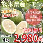 レモン 国産レモン 送料無料 熊本県産 4kg S〜L 3箱購入で1箱おまけ 減農薬 防腐剤ワックス不使用 れもん グリーンレモン 国産
