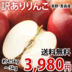 りんご 訳あり 約5kg(4.5〜5kg) リンゴ 送料無料 長野・青森県産 お取り寄せ サンふじ つがる ジョナゴールド ふじ 林檎 フルーツ