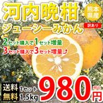 河内晩柑 文旦 訳あり ジューシーみかん 送料無料 1.5kg S〜3L 2セットで1セット 3セットで3セット増量 熊本県産 ジューシーオレンジ