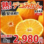 デコポン 同品種 訳ありデコみかん 送料無料 8kg S〜3L 熊本県産 ポンカン みかん ミカン 蜜柑