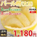 パール柑 文旦 送料無料 訳あり 1.5kg 約5玉前後〜約10玉前後 S〜3Lサイズ混合 熊本県産 2セットで1セット 3セットで3セットおまけ グレープフルーツ みかん