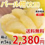 パール柑 5kg 箱込 (内容量4kg+不良果補償分500g)  文旦 みかん 送料無料 訳あり S〜2Lサイズ混合 熊本県産 グレープフルーツ 蜜柑