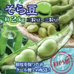 ソラマメ そら豆 愛媛産 空豆 送料無料  約2kg 2粒豆〜3粒豆 クール便発送