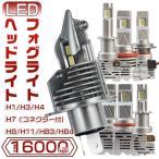 PHILIPS ZESチップより明るい 送料無料 led ヘッドライト&フォグライト H4 Hi/Lo H1 H3 H7 H8 H11 HB3 HB4 新車検対応 6500K LEDバルブ 2個 2年保証 M6