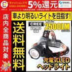 ヘッドライト led ヘッドライト 強力 最強クラス 充電式 防水 懐中電灯 fl-sh016  本体のみ