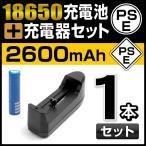 IGNUS THE WOLRD 推奨品 18650充電池