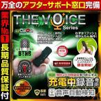 ICレコーダー ボイスレコーダー USBメモリ型 防犯カムカム THE VOICE Series IC-USB003
