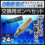 交換用ボンベセット 手動膨張式 ライフジャケット ウエストタイプ用 24gガスボンベ