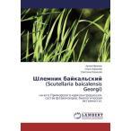 Шлемник байкальский (Scutellaria baicalensis Georgi): на юге Приморского кр
