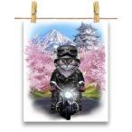 【グレー 猫 ねこ バイク 桜 日本】ポストカード by Fox Republic