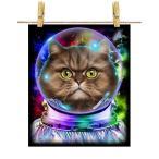 【ペルシャ猫 ねこ 宇宙 飛行士 銀河系】ポストカード by Fox Republic