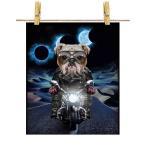 【怒った ブルドッグ ドッグ 犬 いぬ バイク 月】ポストカード by Fox Republic