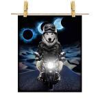 【シベリアンハスキー ドッグ 犬 いぬ バイク 月】ポストカード by Fox Republic