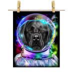 【黒毛 ラブラドルレトリバー ドッグ 犬 いぬ 宇宙 飛行士 銀河系】ポストカード by Fox Republic