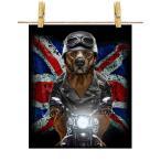 【茶毛のアメリカンピットブル ドッグ 犬 いぬ バイク イギリス】ポストカード by Fox Republic