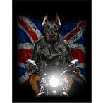 【バイクに乗るドーベルマン・ユニオンジャック】ポストカード 黒背景
