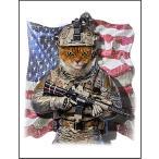 【兵士の猫】ポストカード
