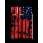 【アメリカ・星条旗・ヤシの木】ポストカード 黒背景
