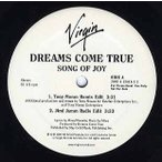 DREAMS COME TRUE - SONG OF JOY 12
