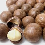 殻付きマカダミアナッツ (ロースト) 900g