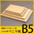規格サイズ ベニヤ板 B5サイズ9枚組