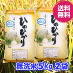 無洗米・令和2年産 熊本県産ひのひかり5kg2袋 送料無料