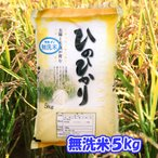 無洗米・令和2年産 熊本県産 ひのひかり5kg 送料無料