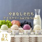 アイスクリーム ソルベ アイス ジェラート シャーベット ギフト Gift 贈り物 送料無料 やまなしそだち アイスクリーム&ソルベ 12個入