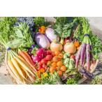 フレッシュグループ淡路島の彩り野菜と香るハーブセット 季節の12種の厳選こだわり詰合わせ