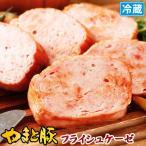 やまと豚 フライシュケーゼ 200g | [冷蔵] やまと豚 豚肉 やまと 豚 お取り寄せグルメ お取り寄せ グルメ 食品 食べ物 ソーセージ お肉 お惣菜 肉