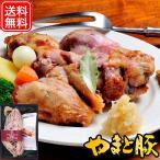 アイスバイン スープ付き ギフト IB-35 | [冷蔵] 送料無料 母の日 父の日 贈り物 内祝い ハム ハムギフト ギフトセット お取り寄せグルメ 肉 骨付き肉 お肉 肉