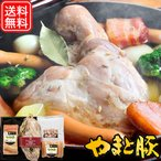 アイスバイン・洋風煮込みセット ギフト IBS-50 | [冷蔵] 送料無料 母の日 父の日 贈り物 内祝い ハム ハムギフト セット お取り寄せグルメ 骨付き肉 食べ物