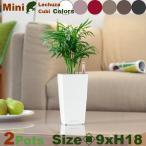 ショッピングプランター Mini Cubi ミニキュービ 2個セット(ロ9cm×H18cm)(底面潅水 ポリプロピレン本体 )(プランター/ポット)(観葉鉢/園芸/寄せ植え)
