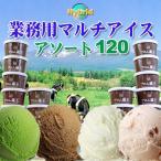 ショッピングアイスクリーム New(業務用)Hybridマルチアイス・アソート120個セット(30個×4種)スプーン付き