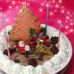クリスマスケーキ 2018 Xmas デコレーションアイスケーキ