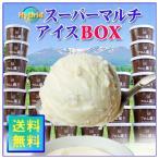 アイス・フロム蔵王HybridスーパーマルチアイスBOX24・アイスクリームセット  送料無料